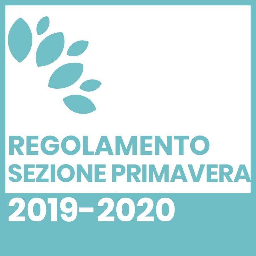Regolamento sezione primavera 2019-2020